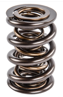 NexTek Triple Valve Springs